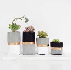 DIY Inspiration | Concrete Planter by https://s-media-cache-ak0.pinimg.com/