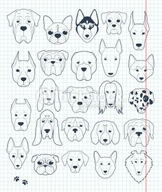 Vector Art : Set of sketches 24 dogs different breeds handmade. Head dog