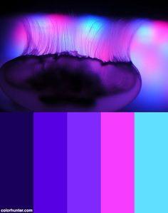 Neon Colour Palette, Color Schemes Colour Palettes, Color Palate, Color Combos, Neon Colors, Maquillage Phosphorescent, Color Palette Challenge, Color Swatches, Color Theory