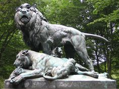 Berlin Lions