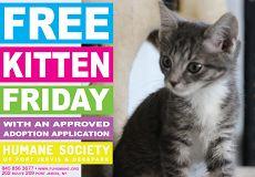 Free Kitten Friday.pdf
