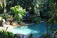 Tropical Garden Swimming Pool