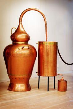 extraction of essential oil using steam distillation biology essay Anal bioanal chem 2004 aug379(7-8):1127-33 epub 2004 jun 4 superheated  water extraction, steam distillation and soxhlet extraction of essential oils of.