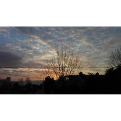 "La chiamerò: ""Spacchio di fili di merda"" #all_sunsets #beautiful #cloudporn #clouds #color #gorgeous #horizon #ig_sunsetshots #instagood #instasky #instasunsets #irox_skyline #isea_sunsets #morning #nature #night #orange #photooftheday #pink #pretty #red #scenicsunset #silhouette #sky #skyporn #sol #sun #sunrays #sunrise #sunset by lanadelmaglion"
