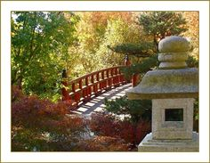 places to see in illinois on pinterest japanese gardens rockford illinois and illinois. Black Bedroom Furniture Sets. Home Design Ideas