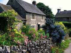 beautiful English stone cottage with blue flowers
