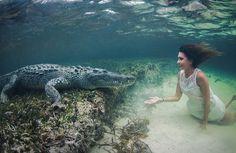 Girl Swims With A Crocodile, Mexico Photo | One Big Photo