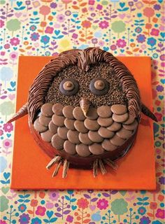 Wise Owl Cake from Birthday Cakes for Kids by Annie Rigg, photo Sandra Lane