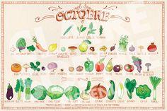 Calendrier d'Octobre | pissenlit Batch Cooking, Cooking Tips, Detox Recipes, Healthy Recipes, Green Queen, Food Illustrations, Health Education, Science Nature, Food Art
