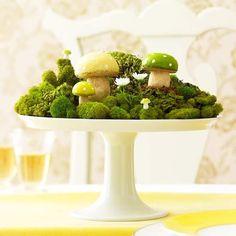 Mushroom & moss terrarium.