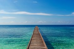 Walk the Line    Pulau Kakaban, Derawan islands, Sangalaki Archipelago, East Kalimantan, Borneo, Indonesia