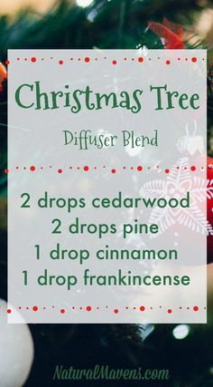 10 Christmas Essential Oil Blends for Beautiful Festive Aromas Love the smell of a real Christmas tree? Diffuse this essential oil blend and it will be just like having one in your home. Essential Oils Christmas, Pine Essential Oil, Yl Essential Oils, Essential Oil Diffuser Blends, Young Living Essential Oils, Cedarwood Essential Oil Uses, Frankincense Essential Oil Uses, Doterra Oils, At Home Spa