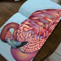 Flamingo from Animal Kingdom colouring book Mais Mais Coloring Book Art, Colouring Pages, Adult Coloring Pages, Colouring Techniques, Color Pencil Art, Copics, Animal Kingdom, Enchanted, Henna