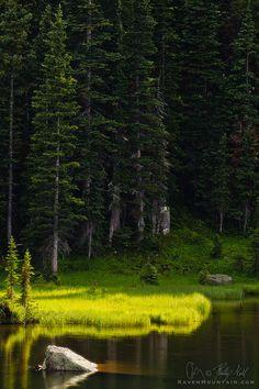 "500px / Photo ""A Spot of Light"" by Phillip Noll"