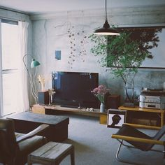 EVOBさんの、Overview,観葉植物,照明,植物,テレビ,オーディオ,ライト,ドライフラワー,スピーカー,フィルムカメラ,テレビボード,賃貸,ニーチェア,光…