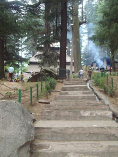 Way to reach Hadimba Mata