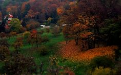 November in Prague - 2012 autumn in Prague.