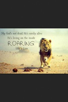 My God's not dead.  He's surely alive.  He's living on the inside, ROARING like a Lion.