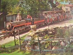 Vintage Postcard - Unused Unstamped - House of David Benton Harbor, Michigan - House of David Train Color Photographic Postcard by AVintageLifeByNikki on Etsy