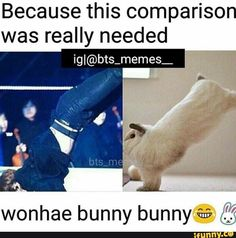 Wasn't gonna repin, but Jungkook's being compared to a bunny, which I believe is highly accurate