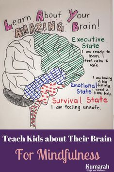 Mindfulness for Kids includes teaching them about how their brain works. Learn how to help kids in the emotional or survival state of their brain to calm down. Teach them mindful practices based on brain science to help them manage emotions! Teaching Mindfulness, Mindfulness For Kids, Mindfulness Activities, Brain Activities, Therapy Activities, Mindfulness Meditation, Meditation Kids, Reiki Meditation, The Brain For Kids