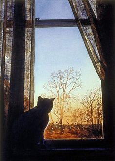 No sé porqué siento fascinación por las imágenes de ventanas,siempre y cuando sea una vista de adentro hacia afuera.Los gatos son mi animal favorito,así que esta imagen para mí es ideal:un gato en la ventana observando el mundo allá afuera.