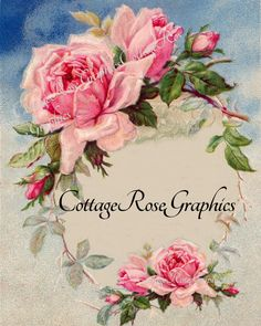 Large digital download ADD your own text Wreath of Pink roses  image BUY 3 get one FREE