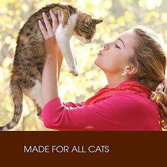 Cat Food 13 Oz