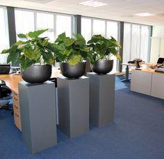 Grootbladerige Alocasia Kunstplanten in luxe polystone schalen op houten plantenzuilen.