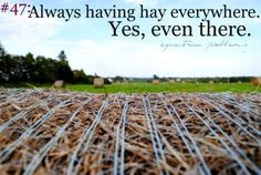 Equestrian Problem #47   ..It's like sand for people that live at the beach, except everyone thinks it's weird when I pull hay out of my bra.