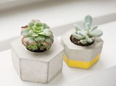 DIY ideas, craft supplies and arts and craft projects. Concrete Pots, Concrete Crafts, Diy Crafts For Girls, Coin Couture, Fabric Squares, Small Gardens, Diy Crochet, Diy Tutorial, Decoration