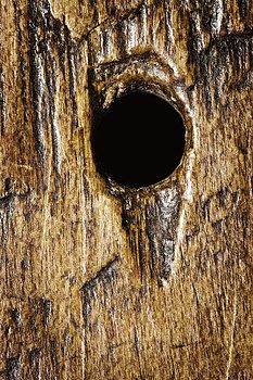 Donald  Erickson - Background  Wood Texture Rough Flat Surface with Hole