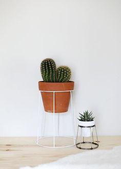 Passeando muito pelo Pinterest em busca de inspiração para trazer pra vocês, eu me deparei com as plantas em suportes , e meio veio u...