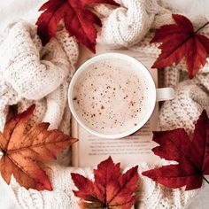 Image discovered by Find images and videos about but first autumn on We Heart It - the app to get lost in what you love. Cozy Aesthetic, Autumn Aesthetic, Autumn Photography, Food Photography, Images Esthétiques, Autumn Cozy, Autumn Fall, Fall Wallpaper, Coffee And Books