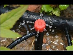 Aspersor  de Riego  Casero Facil y  Barato............     Sprinkler irrigation easy and cheap home - YouTube