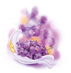 Lavendel #lavender #ingredients