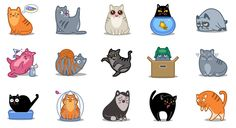 Cat Power and Cat Force - Two Cat Icon Sets by Iconka