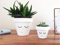 DIY Crafts   Image   Description  Face Planters