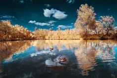 The Infrared Landscapes by David Keochkerian