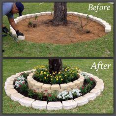 Xeriscape Front Yard Landscaping Ideas (2) – DECOREDO