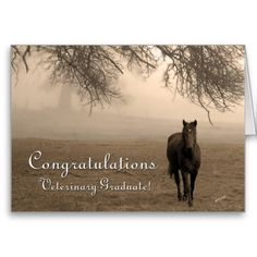 237 best congratulations greeting cards images in 2018