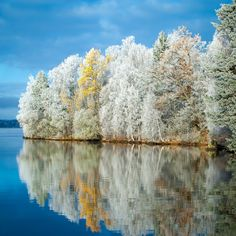 Frost and Reflections by Ari Salmela, via 500px