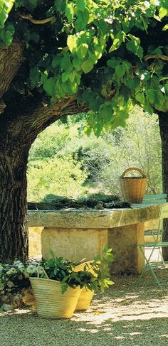 Stone table on garden terrace in Haut-Var, Provence, France • photo: Clive Nichols on Trouvais