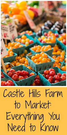 Castle Hills Farm to Market: Everything You Need to Know | MCLife: San Antonio