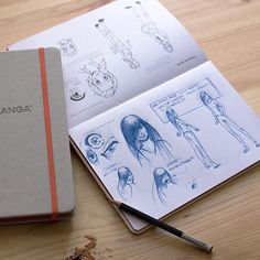 Artist's Bundle: IDRAW COMICS + IDRAW MANGA Sketchbooks
