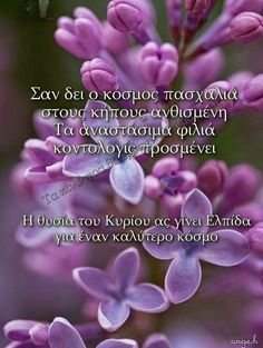 Greek Easter, Greek Quotes, Wish, Diy And Crafts, Wallpapers, Photos, Happy Easter, Pictures, Wallpaper