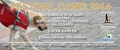 FESTIVAL CANIS 2014http://www.desktopcostarica.com/eventos/2014/festival-canis-2014