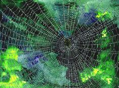 'The orb-weaving spiders were rebuilding the webs that had been damaged in the night. Dew dotted each fine strand so that they looked like sparkling necklaces made from tiny diamonds.' - The Wishbird
