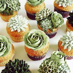 Succulent cupcakes/desserts for a deseret party Cupcakes Succulents, Cactus Cupcakes, Cactus Cake, Giant Cupcakes, Cupcakes Amor, Green Cupcakes, Ladybug Cupcakes, Kitty Cupcakes, Floral Cupcakes