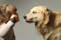 How to raise a dog with children? Children, Dogs, Photos, Animals, Young Children, Boys, Pictures, Animales, Animaux